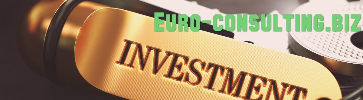 euro-consulting.biz